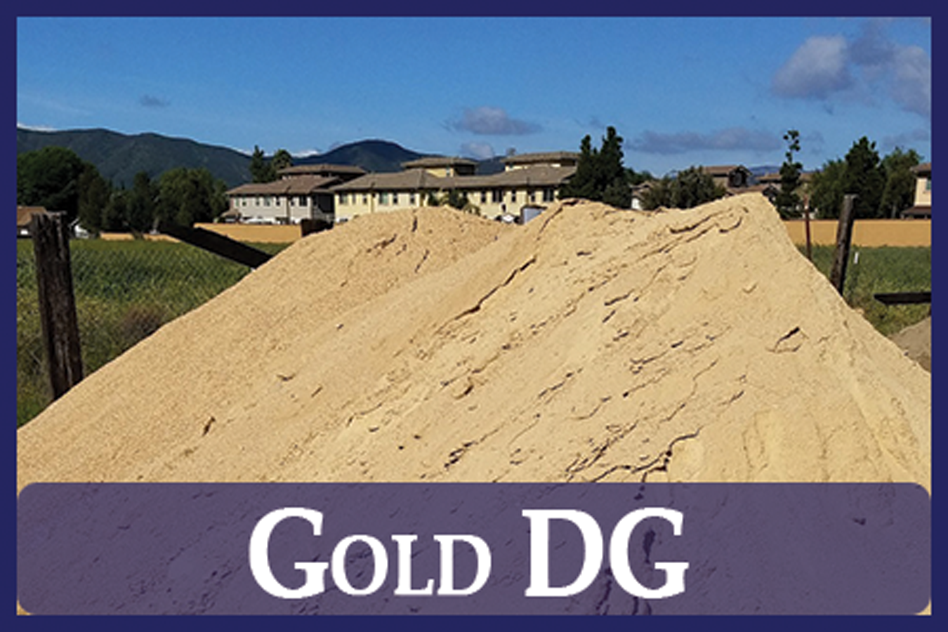 Gold DG