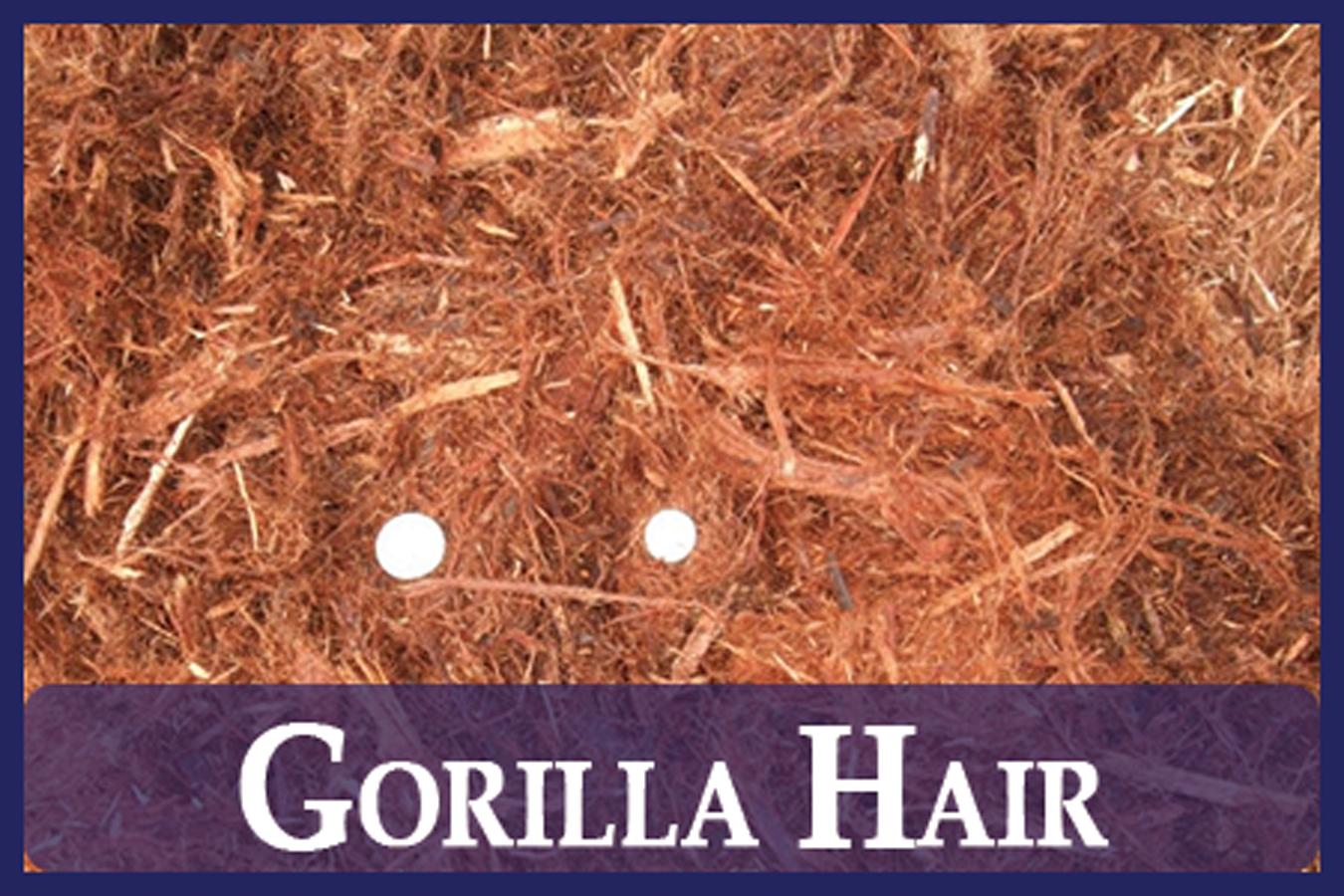Gorilla Hair Mulch